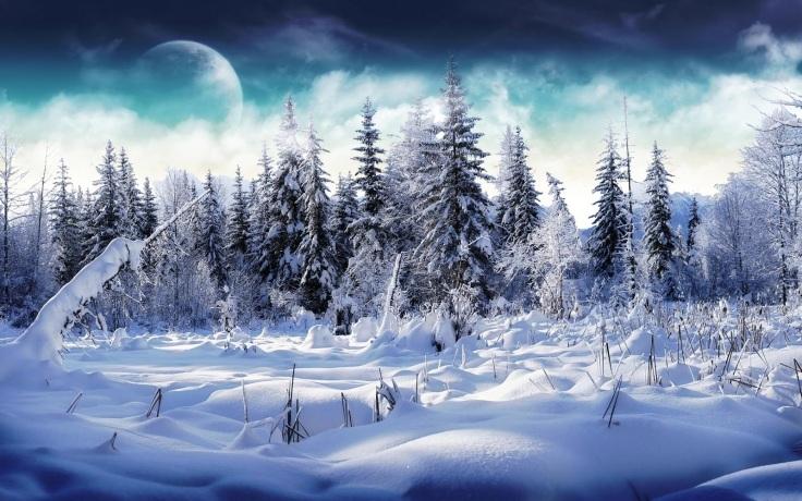 6872246-snow-landscape.jpg