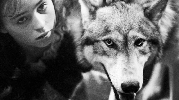the-company-of-wolves-1024.jpg